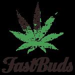 FastBuds logo min