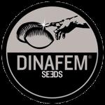 dina fem logo min