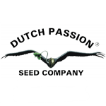 dutch passion seedbank 1 min
