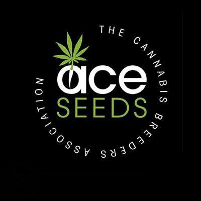 ace seeds image